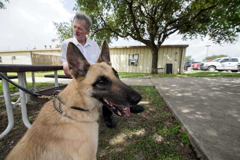 Professor Robert Klesges meets with a military working dog (MDW) June 26, 2019, at Joint Base San Antonio, Texas.