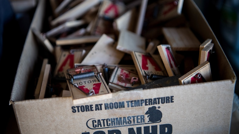 A box of rat traps sit in the 2nd Civil Engineer Squadron pest management shop at Barksdale Air Force Base, Louisiana, June 25, 2019. The 2nd CES pest management shop manages pest in order to prevent the spread of animal-borne illnesses. (U.S. Air Force photo by Airman Jacob B. Wrightsman)