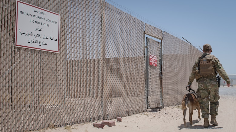 U.S. Air Force Staff Sgt. Kathyrn Malone, 386th Expeditionary Security Forces Squadron military working dog handler, walks her MWD, Uurska, outside the MWD compound at Ali Al Salem Air Base, Kuwait, July 24, 2019. Malone and Uurska are both deployed from the 55th Security Forces Squadron, Offutt Air Force Base, Neb. (U.S. Air Force photo by Tech. Sgt. Daniel Martinez)