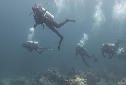 Divers conduct a check-out dive.