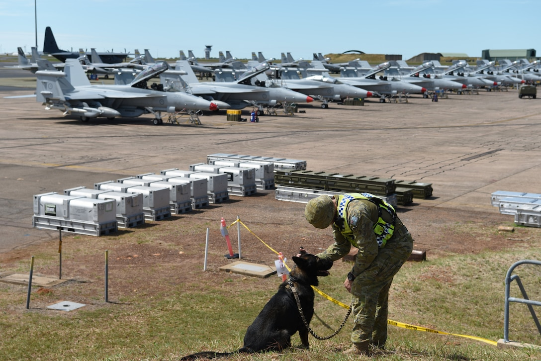 Royal Australian Air Force (RAAF) Leading Air Craftsman Jayden O'Shea, No. 2 Security Forces Squadron military dog handler, and his dog, Deca, watch over an aircraft pad during Exercise Diamond Storm at RAAF Base Darwin, Australia, May 8, 2019. The No. 2 Security Forces Squadron teamed up with the U.S Air Force's 18th Security Forces Squadron from Kadena Air Base, Japan, to protect joint assets on the ground. (U.S. Air Force photo by Staff Sgt. Joshua Edwards)