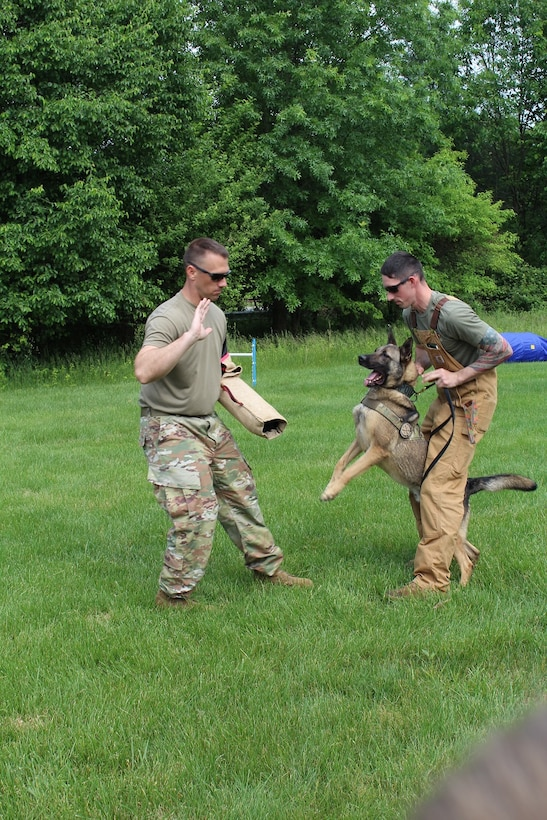 Army Sgt. 1st Class Christopher Kemp (l) barks a command to a military working dog during a demonstration at the 2019 National Cryptologic Museum during the Armed Forces & National Police Demonstration.
