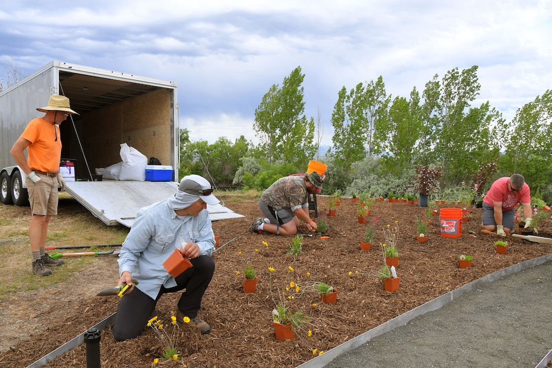 (left to right) Lonny Eldridge, Willard Bay Gardens, Nicholas R. Brown, liaison to Hill Air Force Base with U.S. Fish and Wildlife Service, Richard Abderhalden, volunteer, and Russ Lawrence, 75th Civil Engineering Group, work together planting a new pollinator garden plot, June 6, 2019, at Hill AFB, Utah. The garden will provide food and habitat for pollinator species such as hummingbirds, bees, and other insects, which are critical to maintaining diverse and healthy ecosystems. (U.S. Air Force photo by Todd Cromar)