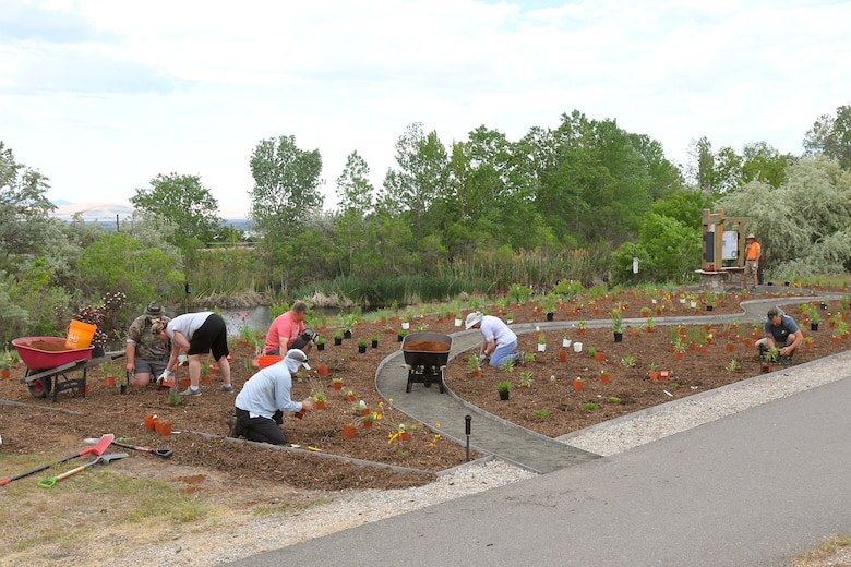 Natural Resource staff and volunteers work together planting a new pollinator garden plot, June 6, 2019, at Hill Air Force Base, Utah. The garden will provide food and habitat for pollinator species such as hummingbirds, bees, and other insects, which are critical to maintaining diverse and healthy ecosystems. (U.S. Air Force photo by Todd Cromar)