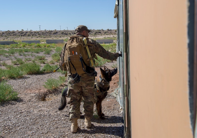 49 SFS MWD handlers perform medical training exercises