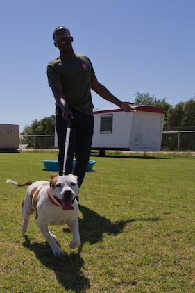 U.S. Marines with Marine Air Control Squadron 1 help out during a Single Marines Progam (SMP) volunteer opportunity at the Humane Society of Yuma, Ariz., April 24, 2019. The SMP of Marine Corps Air Station Yuma sends Marines weekly to the Humane Society of Yuma to volunteer and help around the facility. (U.S. Marine Corps photo by Pfc. John Hall)