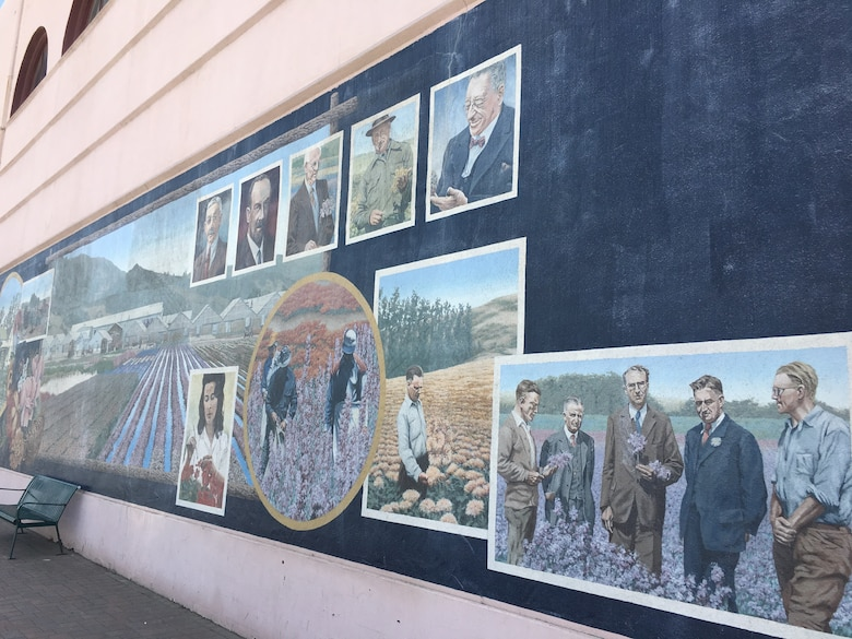 The first mural done in the city is Lompoc's Flower Industry.