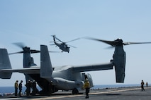 The 31st Marine Expeditionary Unit, the Marine Corps` only continuously forward-deployed MEU, provides a flexible and lethal force ready to perform a wide range of military operations as the premier crisis response force in the Indo-Pacific region.