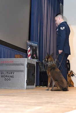 PETERSON AIR FORCE BASE, Colo.— Staff Sgt. Vaughn Rivard, a dog handler, and Gina, a military working dog from the 21st Security Forces Squadron salute a fallen MWD May 14, 2019, on Peterson Air Force Base, Colorado. The Memorial display for MWD's includes a dog kennel that has a leather leash, a chain and a food and water dish inside with the ashes of the fallen MWD on top. (U.S. Air Force photo by Airman 1st Class Andrew J Bertain)