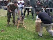 The Grizzly Bash: Marines participate in summer fun