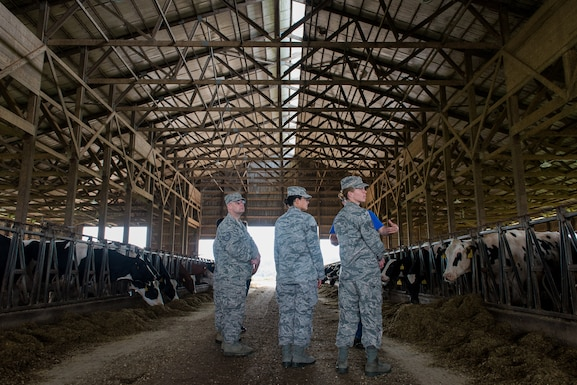 U.S. Air Force public health and bioenvironmental engineering specialists deployed in support of Delta Area Economic Opportunity Corporation Tri-State Innovative Readiness Training 2019 visit a dairy farm in Perryville, Mo., June 18, 2019. The Airmen coordinated with civilian public health agency partners to view livestock processes and promote interagency cooperation. (U.S. Air National Guard photo by Senior Airman Jonathan W. Padish)