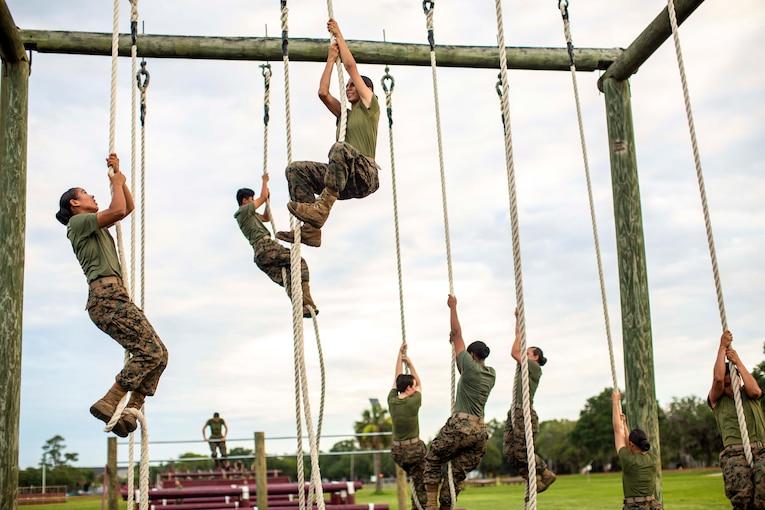Marines climbing ropes.