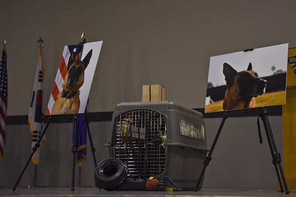 ilitary Working Dog Ooyvey was honored during a memorial service held June 19, 2019, at Kunsan Air Base, Republic of Korea. MWD Ooyvey passed away June 6, 2019, surrounded by the 8th Security Forces Squadron MWD Section. (U.S. Air Force photo by Staff Sgt. Mackenzie Mendez)