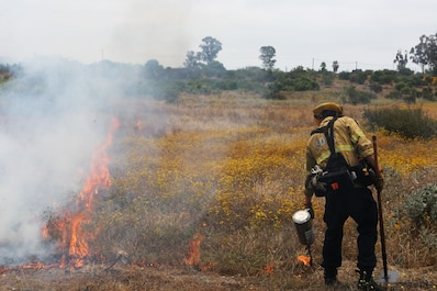 Fighting Fire with Fire! MCAS Miramar conducts controlled burns
