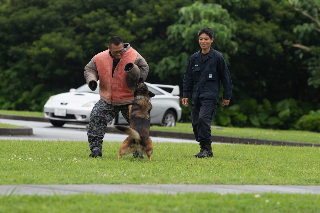 U.S. Air Force Airmen assigned to the 18th Security Forces Squadron train with Japan Air Self Defense Force member Okuzako Takashi during a bilateral exchange at Kadena Air Base, Japan, June 18, 2019