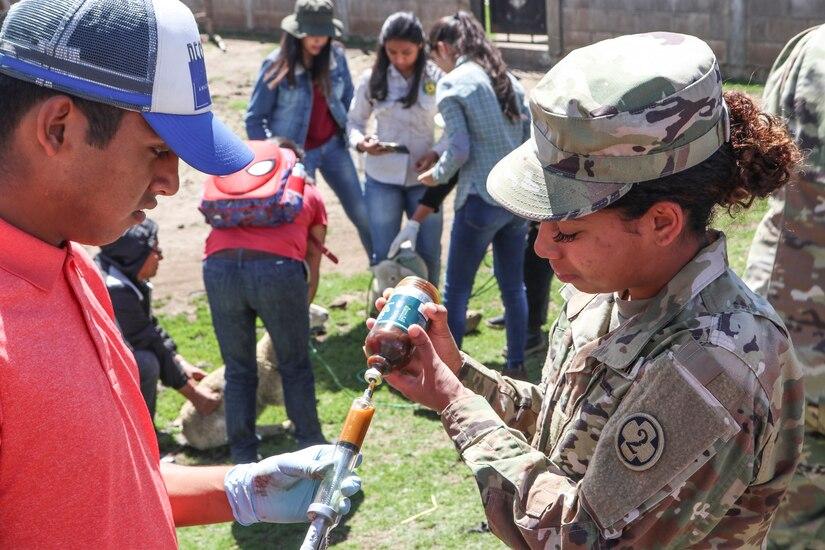 U.S. Army Reserve veterinarians enhance skills with Guatemalan partners during Beyond the Horizon 19