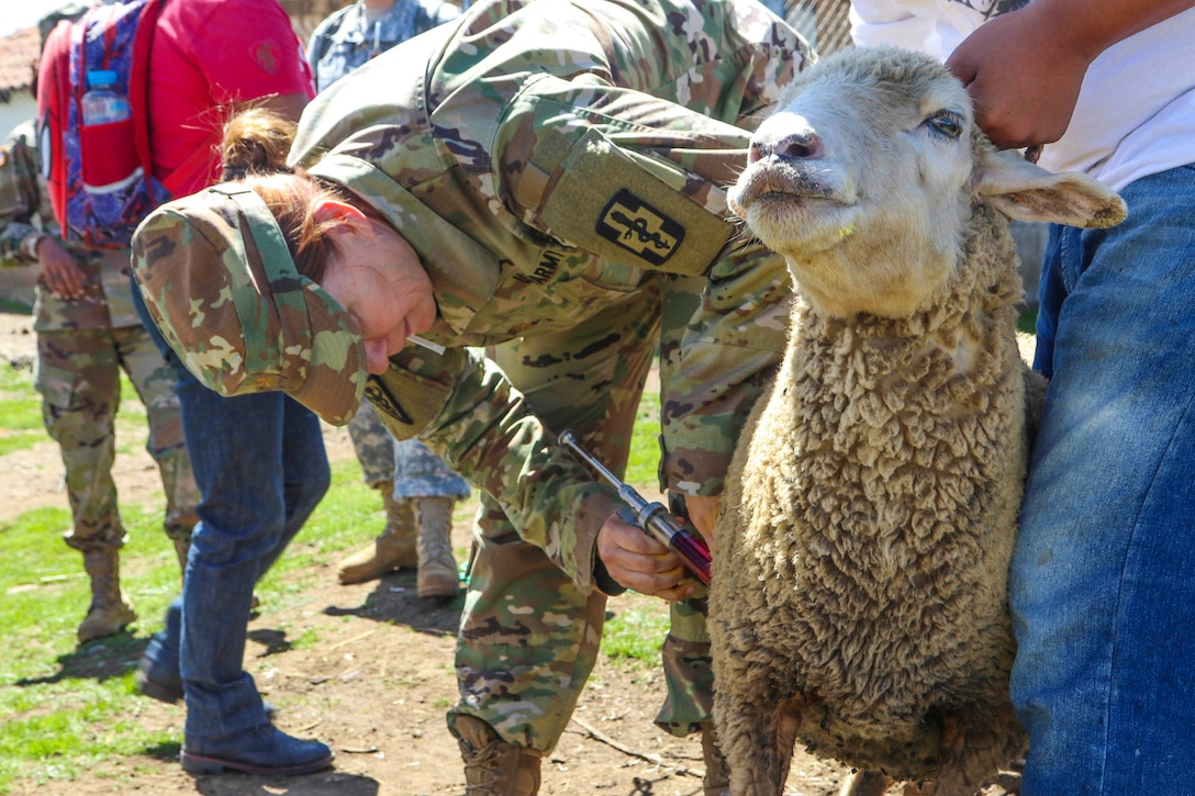 A soldier gives a sheep a shot while a man holds it by the neck.