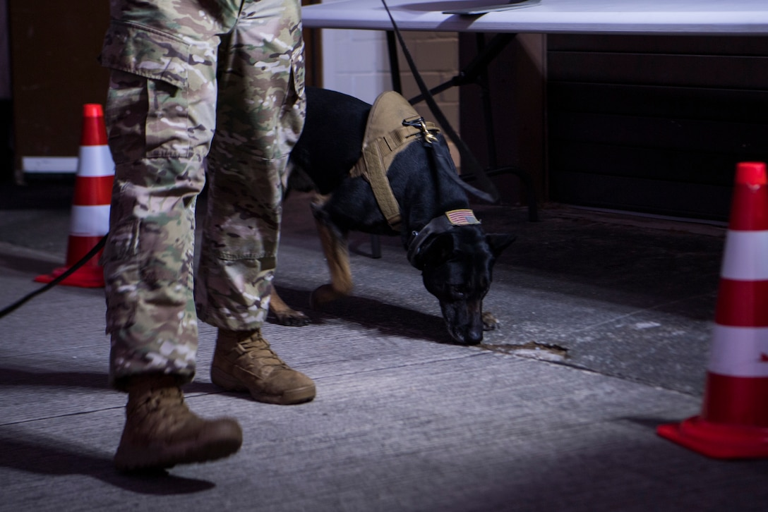 Ramstein hosted Exercise Operation Varsity 19-01, a week-long exercise testing the response capability of multiple base agencies.