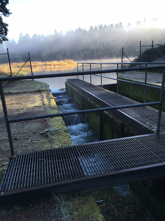 Muck Creek