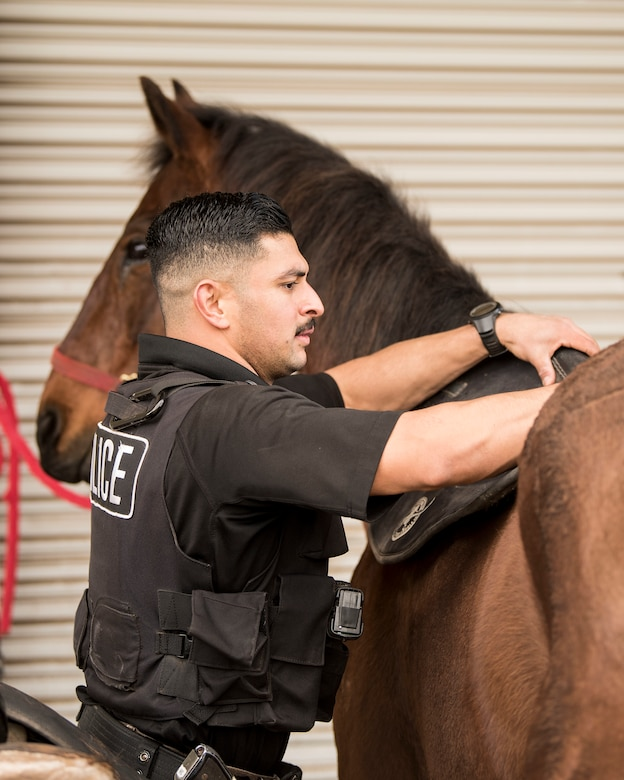 """Staff Sgt. Bert Mantilla, 30th Security Forces Squadron conservation patrolman, puts a saddle pad on Military Working Horse """"Trooper"""" Feb. 21, 2019, at Vandenberg Air Force Base, Calif. Trooper is a 14 year old American quarter horse who entered active duty in 2010 and helps to patrol 99,600 acres of hard to reach Vandenberg with his patrolman. (U.S. Air Force photo by Airman 1st Class Hanah Abercrombie)"""