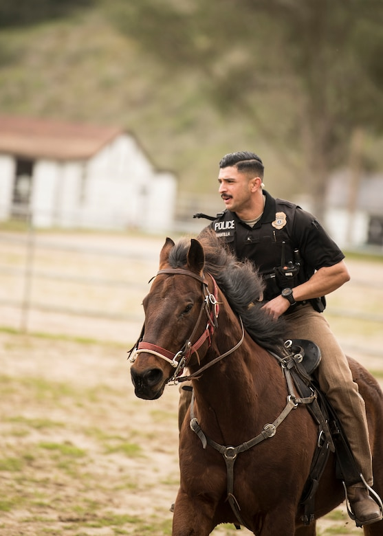 """Staff Sgt. Bert Mantilla, 30th Security Forces Squadron conservation patrolman, rides Military Working Horse """"Trooper"""" Feb. 21, 2019, at Vandenberg Air Force Base, Calif. Trooper is a 14 year old American quarter horse who entered active duty in 2010 and helps to patrol 99,600 acres of hard-to-reach Vandenberg with his patrolman. (U.S. Air Force photo by Airman 1st Class Hanah Abercrombie)"""