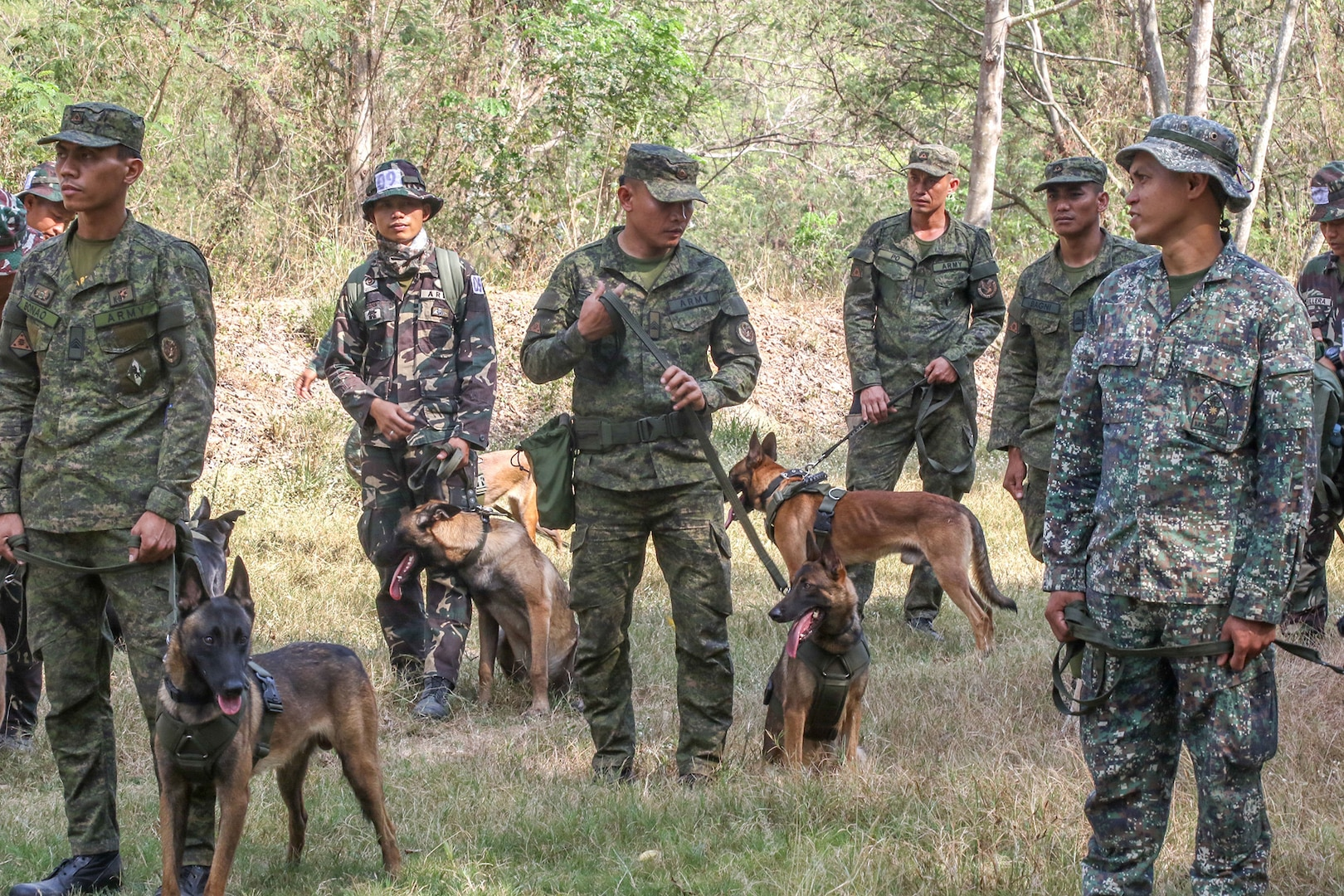 U.S. and Filipino Army Swap Training Techniques for Working Dogs