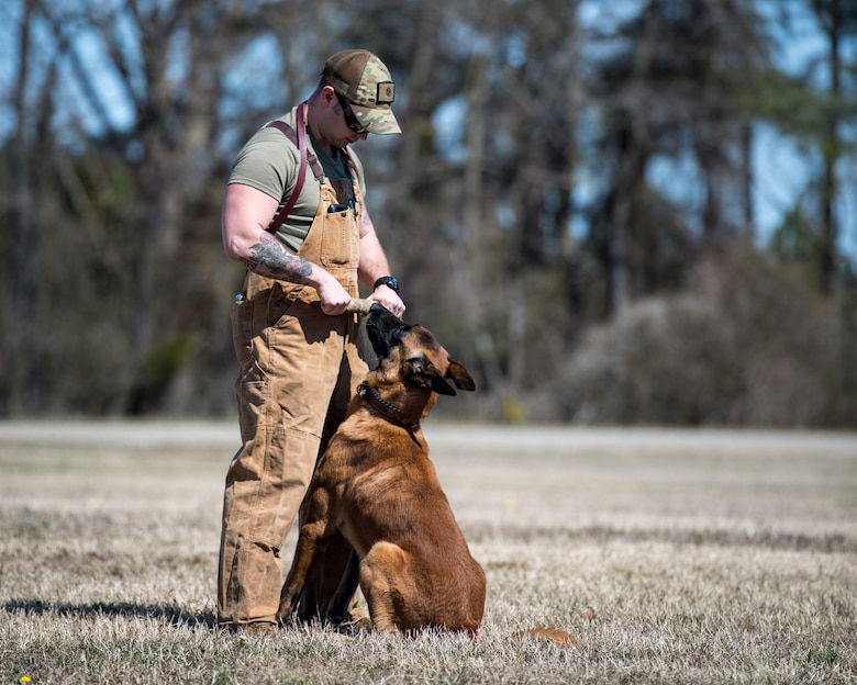 U.S. Army Sgt. Aaron Vinson, Training and Doctrine Command 3rd Military Police Detachment police drug detection dog handler trains military working dog Uunion at Joint Base Langley-Eustis, Virginia, March 11, 2019.