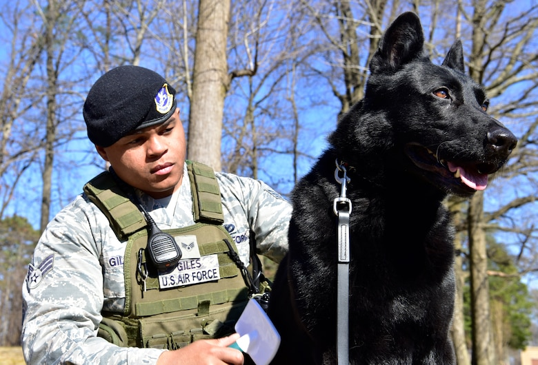 Military working dog featuring Senior Airman Clifton Giles and his dog Jerry