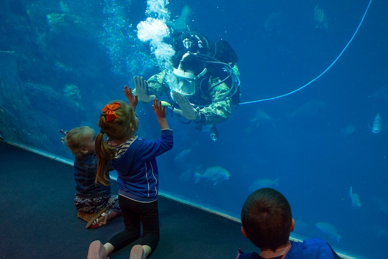 A diver interacts with an aquarium visitor.