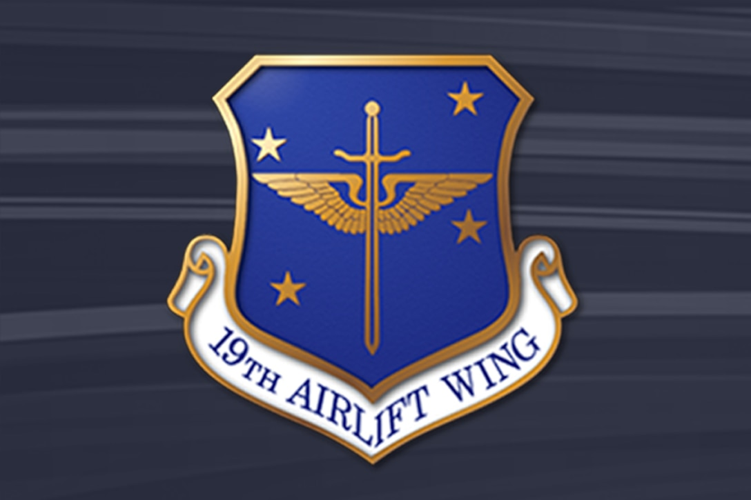 19th Airlift Wing crest on bluish-gray striped background.