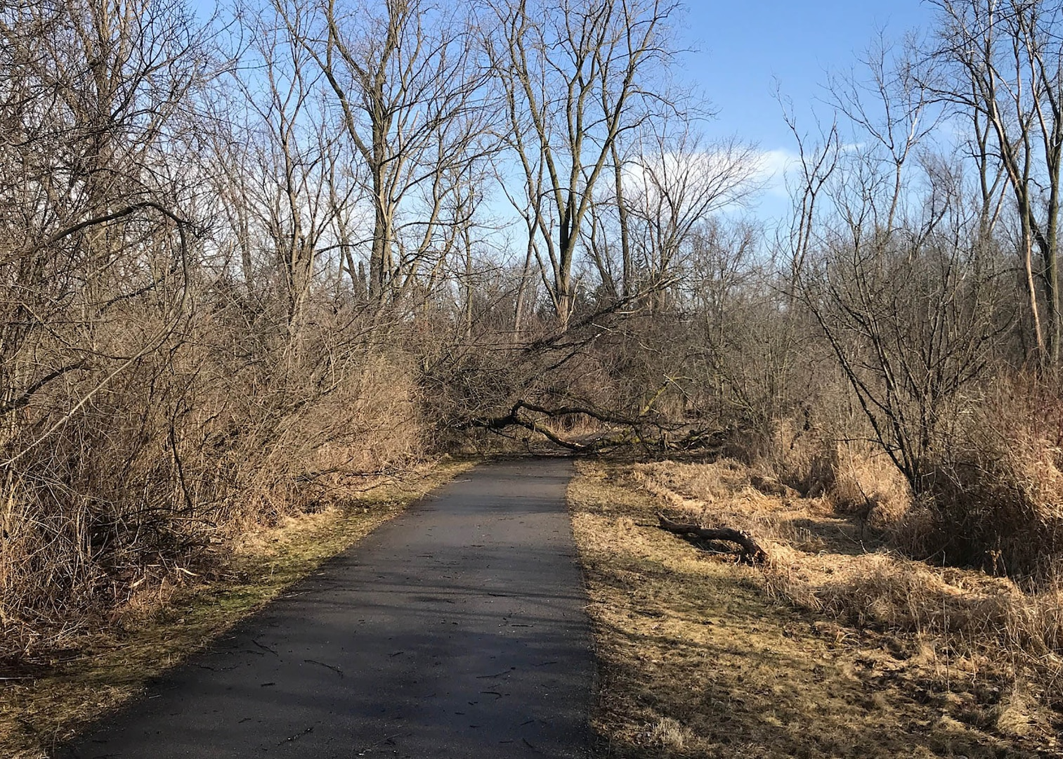 Winter weather puts up obstacles to runners hoping to enjoy their Pi Day run outdoors.