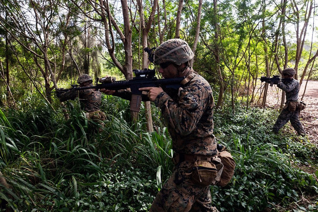 Marines point their weapons into a jungle while on patrol.