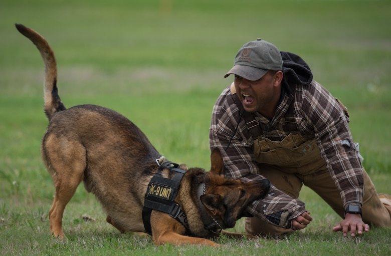 Airman 1st Class Darren Raines, 22nd Security Forces Squadron military working dog handler, participates in a MWD demonstration May 2, 2019 at McConnell Air Force Base, Kan. The 22nd SFS held multiple demonstrations for Maj. Gen. Sam Barrett, 18th Air Force commander, to show what their purpose is and how they protect the base. ( U.S. Air Force photo by Senior Airman Alan Ricker)