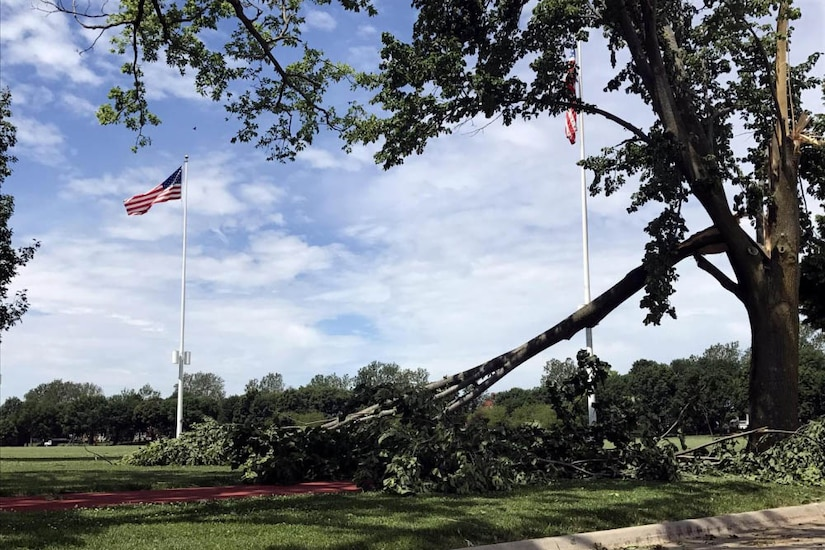 Downed trees are contrasted by upright flagpoles.