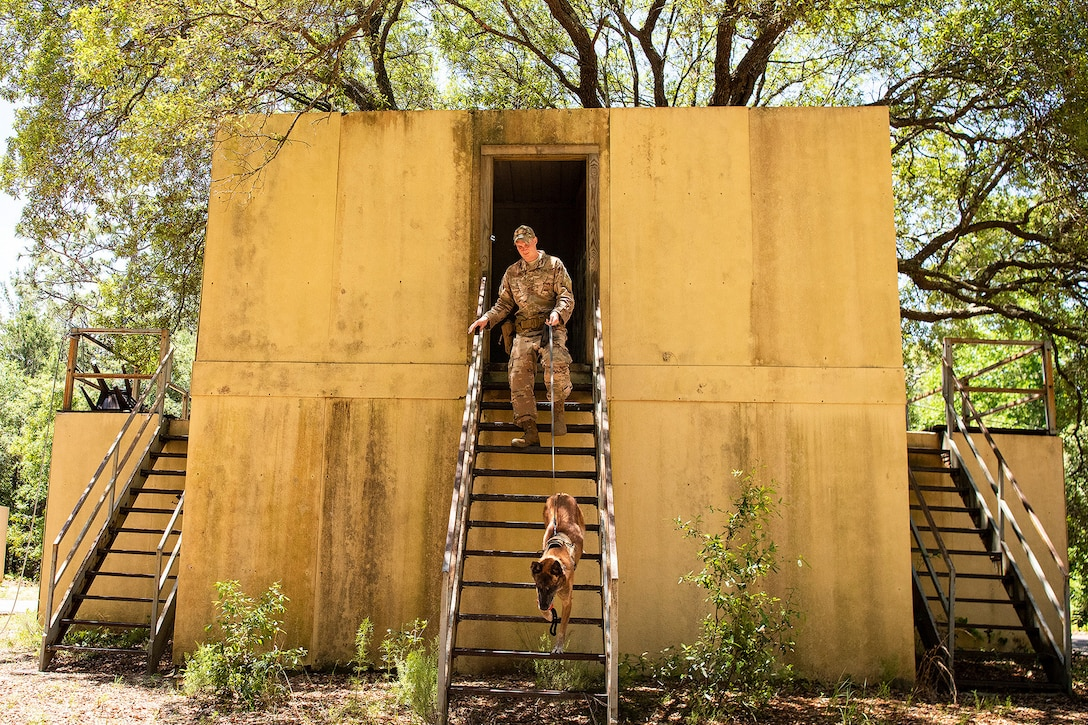An airman walks a dog down stairs and outside of a building.