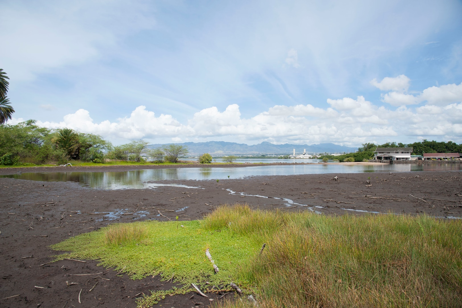 A cleanup at the ancient fishpond, Loko Pa'aiau, as part of Earth Month at McGrew Point Navy housing.