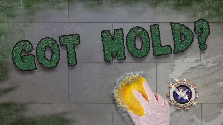 Got Mold? Simple preventive measures can help control mold in living spaces