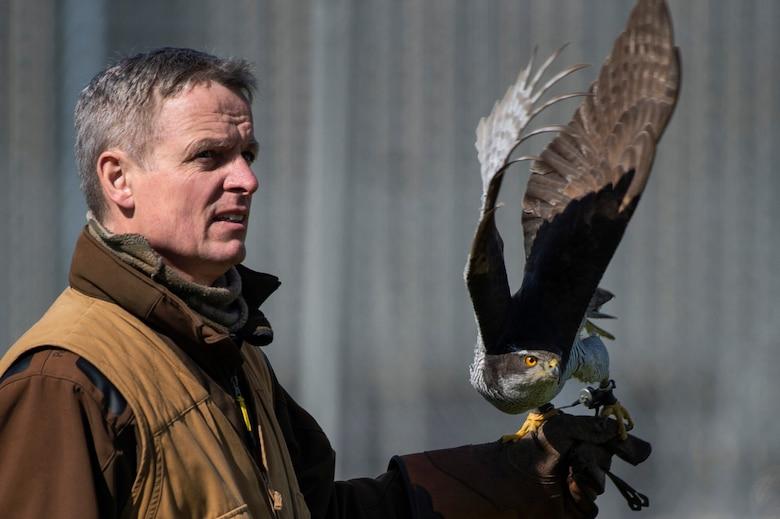 A falconer launches his hawk