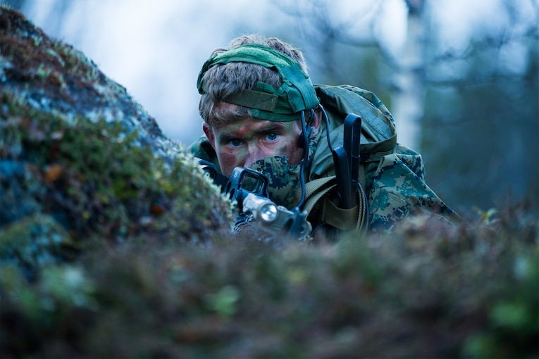 A Marine looks through a scope in the woods.