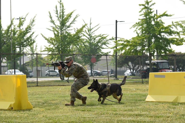 Whether active military duty, local law enforcement or a military working dog, National Police Week is a chance to honor and recognize those who risk their lives every day to ensure the safety of others. (U.S. Air Force photo by Senior Airman Savannah L. Waters)