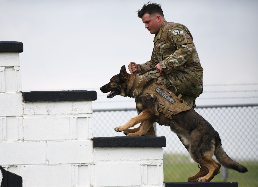 Senior Airman Chase Loggins, a 28th Security Forces Squadron military working dog handler, leads MWD Boris through the obedience course on Ellsworth Air Force Base, S.D., May 16, 2019. Loggins and Boris competed against a police K-9 from the South Dakota Highway Patrol, in recognition of National Police Week. The dogs had to complete the obstacle course without being distracted by the plethora of toys planted throughout the course.  (U.S. Air Force photo by Airman 1st Class Christina Bennett)