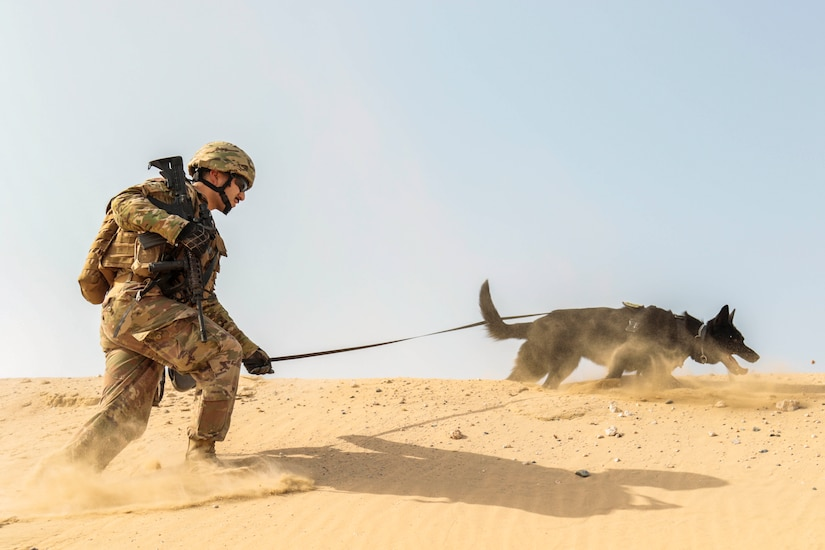 A sailor walks on sand with hold a dog by the leash.