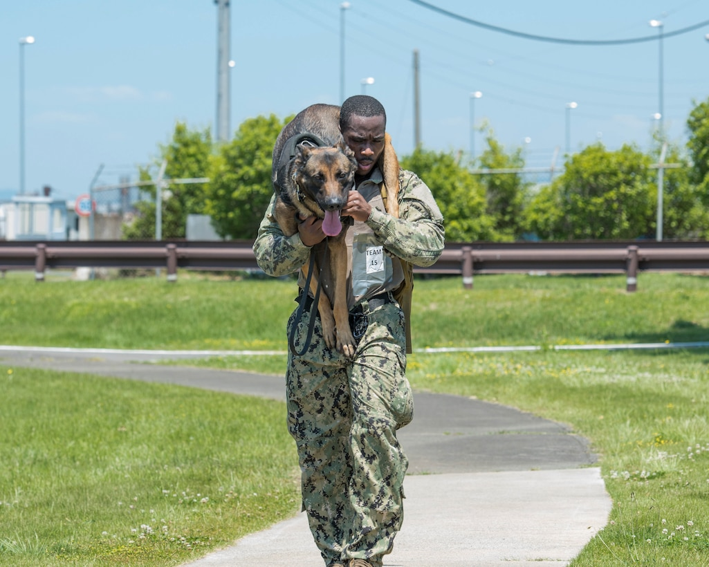 Master-at-Arms 2nd Class Howard Norris, Commander Fleet Activities Yokosuka Security Department military working dog handler, carries his military working dog, Ttibor, during Yokota's 2019 National Police Week Iron Dog competition, May 24, 2019, at Yokota Air Base, Japan
