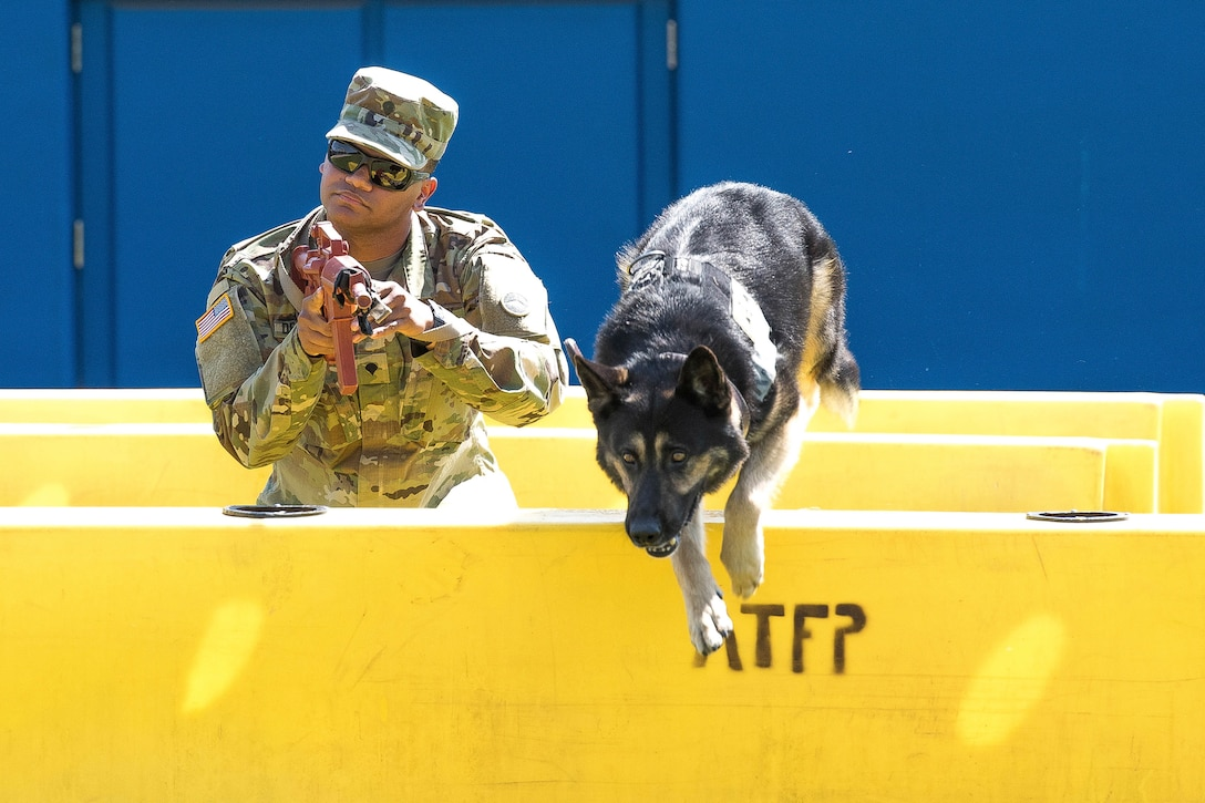A dog jumps a barricade while a soldier carrying a simulated rifle provides security.
