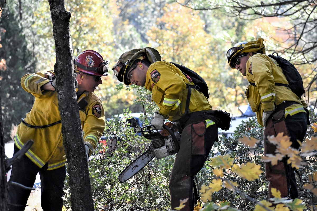 A firefighter gestures at a tree as two guardsmen study it.
