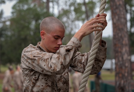 A recruit with Lima Company, 3rd Recruit Training Battalion, decends a rope on the Confidence Course on Marine Corps Recruit Depot Parris Island, S.C. Oct. 30, 2019. The Confidence Course is composed of various obstacles that both physically and mentally challenge recruits. (U.S. Marine Corps photo by Pfc. Michelle Brudnicki)