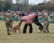 Yokota First for Military Working Dogs at Iruma Air Show