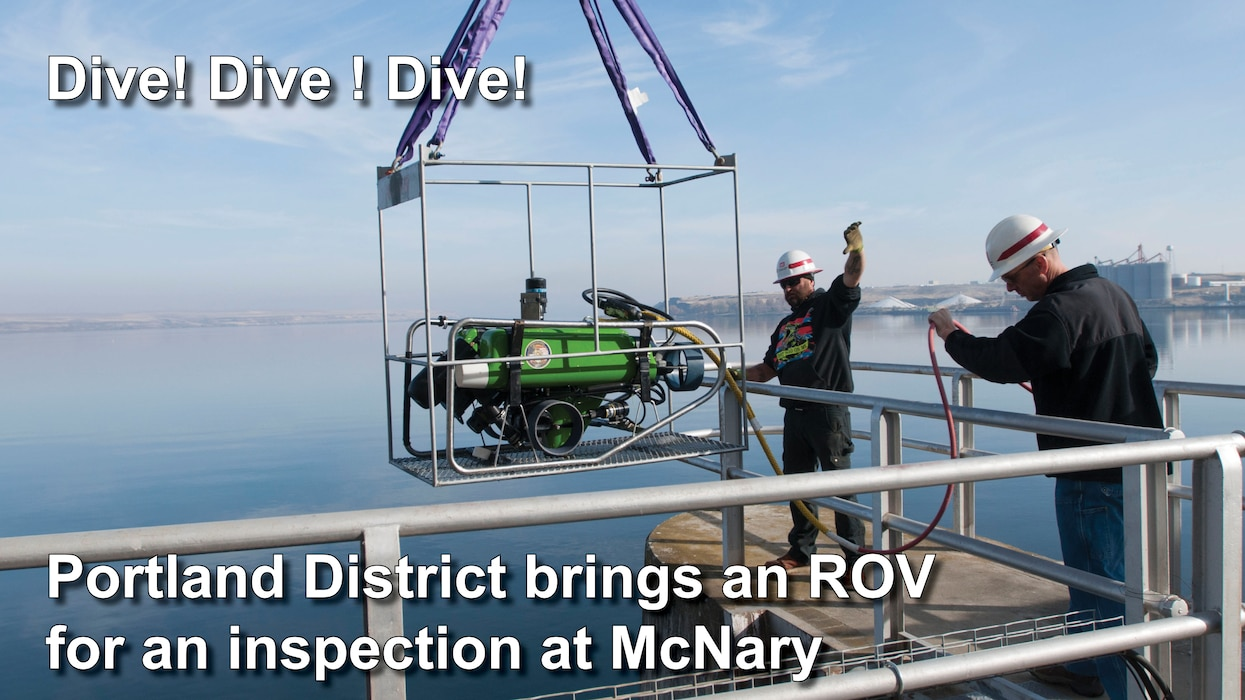Dive! Dive! Dive!