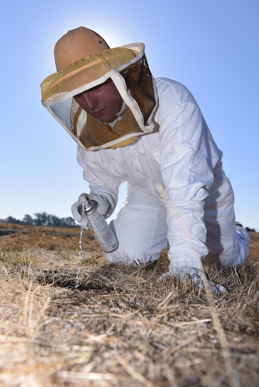 U.S. Air Force Senior Airman David De Alva, 60th Civil Engineer Squadron pest management technician, sprays hornet's nests with insecticide Nov. 8, 2019, at Travis Air Force Base, California. During dryer seasons, hornets will burrow in squirrel holes and De Alva sprays their homes so the pests won't bother Travis residents. (U.S. Air Force photo by Airman 1st Class Cameron Otte)