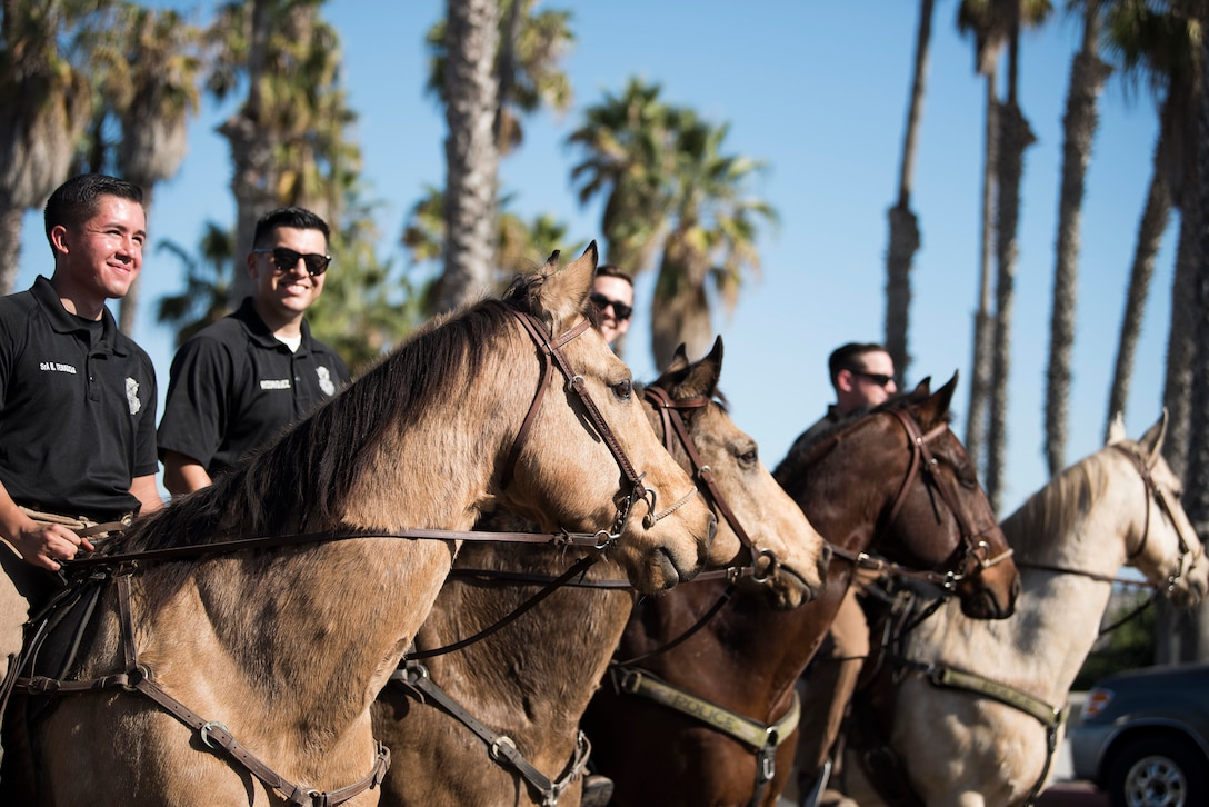 30th Security Forces Squadron Conservation unit  patrolmen and Military Working Horses during the Santa Barbara Veterans Day Parade Nov. 9, 2019, in Santa Barbara, Calif. The 30th SFS MWH law enforcement unit is the only equine patrol unit within the Department of Defense and is one of four conservation units in the U.S. Air Force. The unit patrols hard-to-reach hunting and fishing areas at Vandenberg Air Force Base, monitors delicate beach eco-systems, and participates in parades and official engagements. (U.S. Air Force photo by Airman 1st Class Hanah Abercrombie)